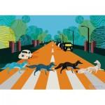 Puzzle   Abbey Fox Road