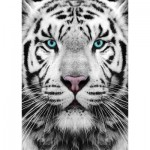 Puzzle  Gold-Puzzle-61512 Siberian Tiger