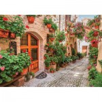 Puzzle  Gold-Puzzle-61574 A Street in Italy