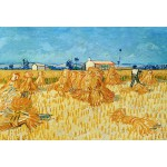 Puzzle  Grafika-Kids-00022 XXL Pieces - Vincent van Gogh, 1888