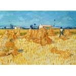 Grafika-Kids-00205 Magnetic Puzzles - Vincent van Gogh, 1888