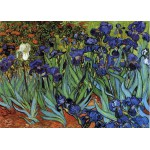 Puzzle  Grafika-Kids-00219 Magnetic Pieces - Vincent van Gogh, 1889