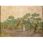 Puzzle  Grafika-Kids-00443 Van Gogh: Women Picking Olives,1889