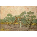 Puzzle  Grafika-Kids-00447 XXL Pieces - Van Gogh: Women Picking Olives,1889