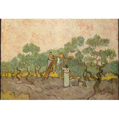 Puzzle Grafika-Kids-00447 XXL Pieces - Van Gogh: Women Picking Olives,1889