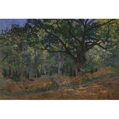 Puzzle Grafika-Kids-00475 XXL Pieces - Claude Monet: Fontainebleau, 1865