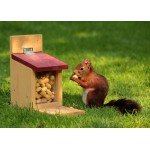 Puzzle  Grafika-Kids-00653 Magnetic Pieces - Squirrel