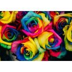 Puzzle  Grafika-Kids-00946 Roses