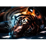 Puzzle  Grafika-Kids-00964 Magnetic Pieces - Tiger