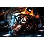 Puzzle  Grafika-Kids-00965 XXL Pieces - Tiger
