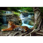 Puzzle  Grafika-Kids-01060 XXL Pieces - Tiger