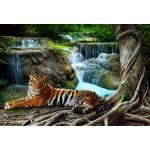 Puzzle  Grafika-Kids-01060 XXL Pieces - Tiger