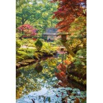 Puzzle  Grafika-Kids-01064 XXL Pieces - Zen Forest