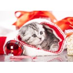 Puzzle  Grafika-Kids-01128 Christmas Kitten