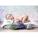 Puzzle  Grafika-Kids-01153 Konrad Bak: Baby Lavender