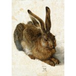 Puzzle  Grafika-Kids-01256 Albrecht Dürer - The Rabbit, 1502