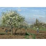 Puzzle  Grafika-Kids-01373 Camille Pissarro : Orchard in Bloom, Louveciennes, 1872
