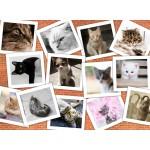 Puzzle  Grafika-Kids-01618 Cats