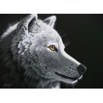 Puzzle  Grafika-Kids-01653 Schim Schimmel - Wolf Light