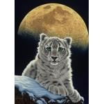 Puzzle  Grafika-Kids-01655 Schim Schimmel - Moon Leopard