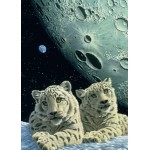 Puzzle  Grafika-Kids-01667 Magnetic Pieces - Schim Schimmel - Lair of the Snow Leopard