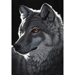 Puzzle  Grafika-Kids-01701 Schim Schimmel - Night Wolf