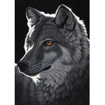 Puzzle  Grafika-Kids-01702 Magnetic Pieces - Schim Schimmel - Night Wolf