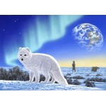 Puzzle  Grafika-Kids-01949 Magnetic Pieces - Schim Schimmel - Artic Fox