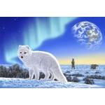 Puzzle  Grafika-Kids-01951 XXL Pieces - Schim Schimmel - Artic Fox
