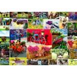Puzzle  Grafika-Kids-02107 Collage - Bikes