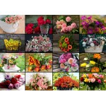 Puzzle   Magnetic Pieces - Collage - Flowers