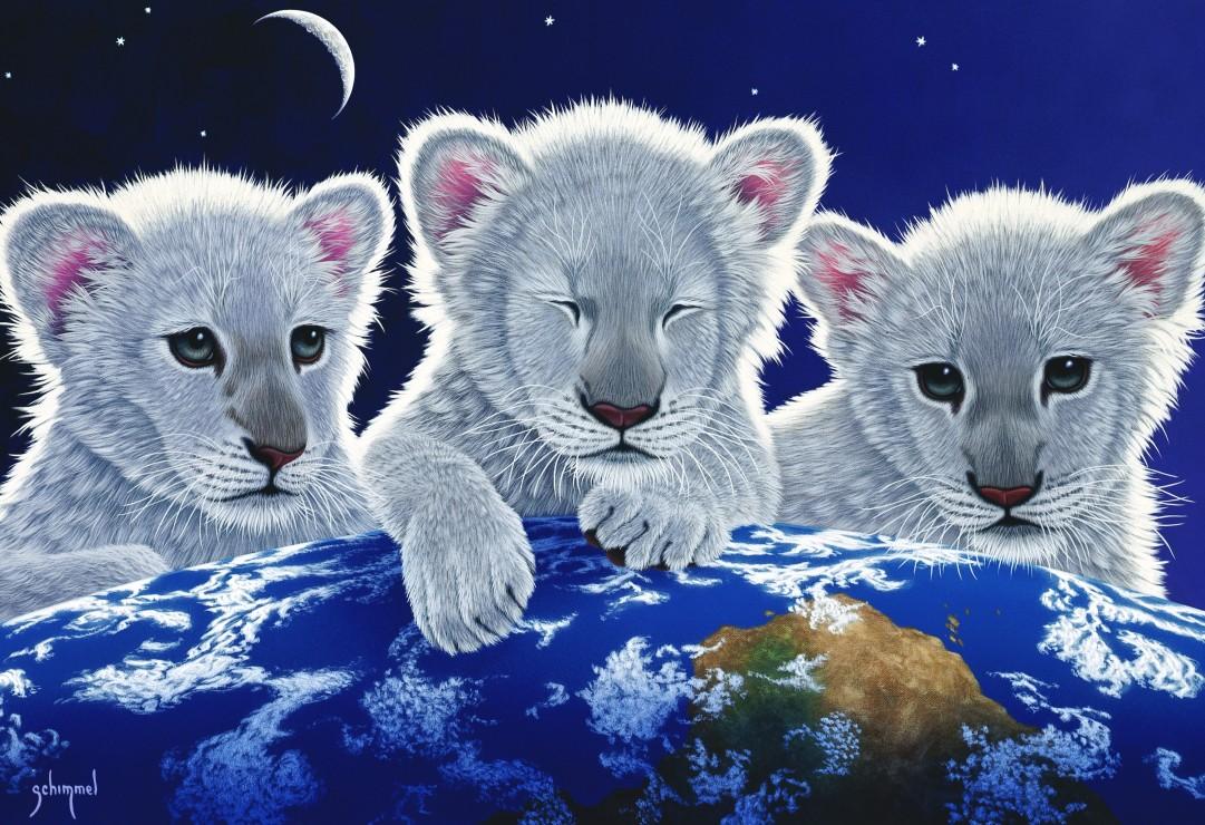 Живые открытки животные, открытку вставить