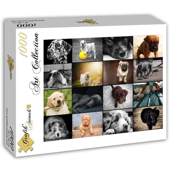 Puzzle Collage - Dogs Grafika-T-00101 1000 pieces Jigsaw Puzzles ...