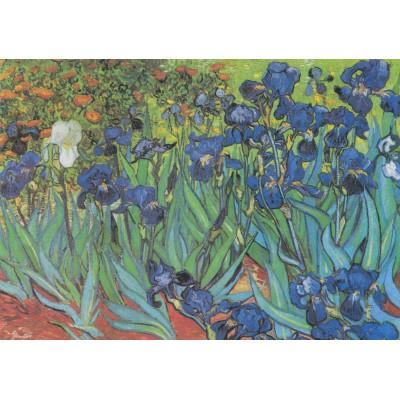 Puzzle Grafika-00074 Vincent Van Gogh, 1889