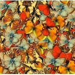 Puzzle  Grafika-00797 Butterflies Butterflies Butterflies!