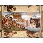 Puzzle  Grafika-01115 Michelangelo