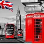 Puzzle  Grafika-01155 London
