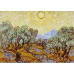 Puzzle  Grafika-01174 Vincent van Gogh: Olive Trees, 1889
