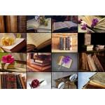 Puzzle  Grafika-01403 Collage - Books
