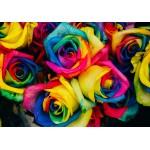 Puzzle  Grafika-01484 Roses
