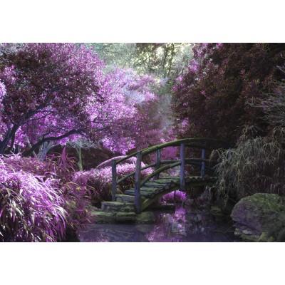 Puzzle Grafika-01499 Zen Bridge