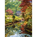 Puzzle  Grafika-01563 Zen Forest