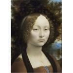 Puzzle  Grafika-01591 Leonard de Vinci: Ginevra de' Benci, 1474-1476
