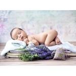 Puzzle  Grafika-01625 Konrad Bak: Baby Lavender