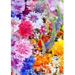 Puzzle  Grafika-01639 Flower Blast