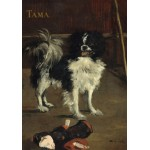 Puzzle  Grafika-01746 Edouard Manet: Tama: The Japanese Dog, 1875