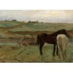 Puzzle  Grafika-01770 Edgar Degas: Horses in a Meadow, 1871