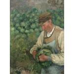 Puzzle  Grafika-02021 Camille Pissarro: The Gardener - Old Peasant with Cabbage