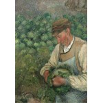 Puzzle  Grafika-02022 Camille Pissarro: The Gardener - Old Peasant with Cabbage