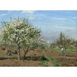 Puzzle  Grafika-02027 Camille Pissarro : Orchard in Bloom, Louveciennes, 1872